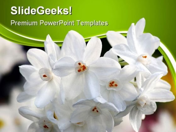 White Flowers Nature PowerPoint Themes And PowerPoint Slides 0411