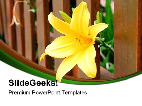 Yellow Freedom Flower Nature PowerPoint Themes And PowerPoint Slides 0211