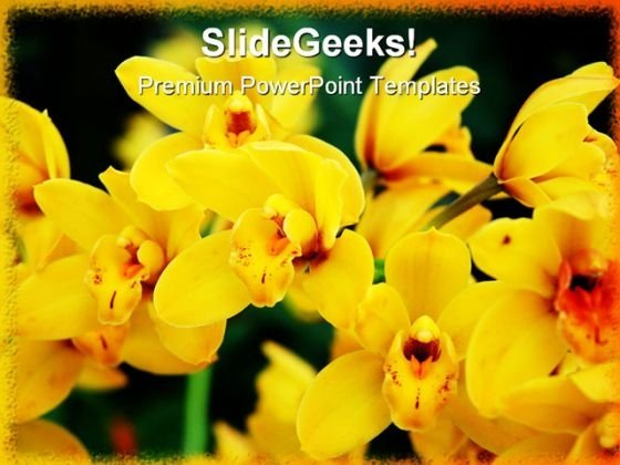 Yellow Orchids Nature PowerPoint Template 0810