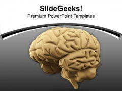 3d Illustration Of A Human Brain PowerPoint Templates Ppt Backgrounds For Slides 0713