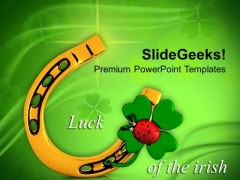 3d Lucky Symbol With Lady Bug Irish Culture PowerPoint Templates Ppt Backgrounds For Slides 0313