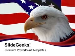 American Bald Eagle Animals PowerPoint Themes And PowerPoint Slides 0611