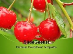 Appetizing Cherries Food PowerPoint Templates And PowerPoint Backgrounds 0211