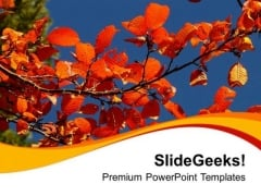 Autumn Fall Nature PowerPoint Templates Ppt Backgrounds For Slides 0513