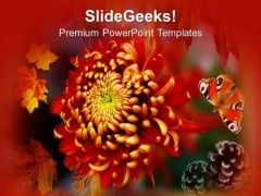 Autumn Is Season Of Flowers PowerPoint Templates Ppt Backgrounds For Slides 0613