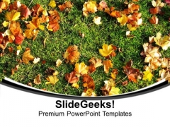 Autumn Leaves On Green Grass PowerPoint Templates Ppt Backgrounds For Slides 0613