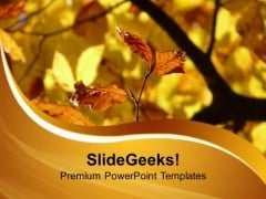 Autumn Leaves PowerPoint Templates Ppt Backgrounds For Slides 0513