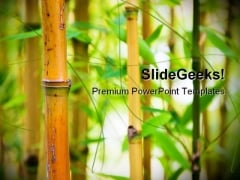 Bamboo Nature PowerPoint Templates And PowerPoint Backgrounds 0111