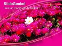 Be Different Flower Beauty PowerPoint Templates And PowerPoint Backgrounds 0311