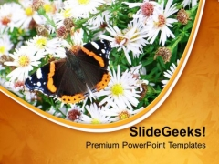 Beautiful Background Garden Theme PowerPoint Templates Ppt Backgrounds For Slides 0413