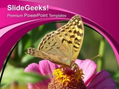 Bee On Blooming Flower PowerPoint Templates Ppt Backgrounds For Slides 0513