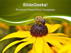 Bee On Yellow Flower Nature PowerPoint Templates And PowerPoint Backgrounds 0311