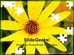 Black Eyed Susans Nature PowerPoint Templates And PowerPoint Backgrounds 0211