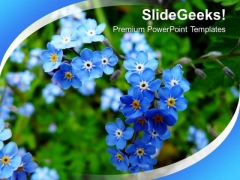 Blooming Flowers Nature PowerPoint Templates Ppt Backgrounds For Slides 0213