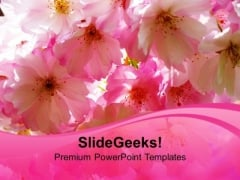 Blossoms Beauty Nature PowerPoint Templates Ppt Backgrounds For Slides 0213