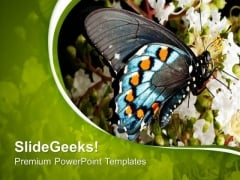 Blue Butterfly With Green Abstract Background PowerPoint Templates Ppt Backgrounds For Slides 0713