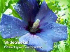 Blue Flower Nature PowerPoint Templates And PowerPoint Backgrounds 0311