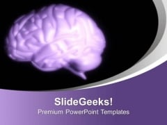 Brain Is Important Part Of Human Body PowerPoint Templates Ppt Backgrounds For Slides 0613