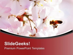 Bright Color Honey Bee And Flower Background PowerPoint Templates Ppt Backgrounds For Slides 0413