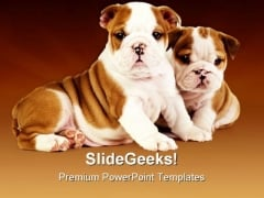 Bulldog Puppies Animals PowerPoint Themes And PowerPoint Slides 0511
