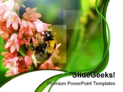 Bumble Bee Nature PowerPoint Templates And PowerPoint Backgrounds 0211