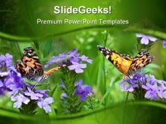 Butterflies Nature PowerPoint Themes And PowerPoint Slides 0211