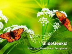 Butterflies On Flowers Nature PowerPoint Templates And PowerPoint Backgrounds 0211