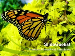 Butterfly Animals PowerPoint Backgrounds And Templates 0111