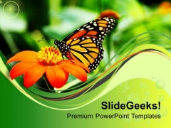 Butterfly With Flower PowerPoint Templates Ppt Backgrounds For Slides 0613