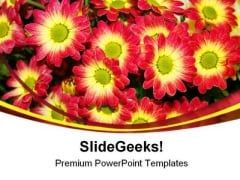 Chrysanthemum Flower Nature PowerPoint Templates And PowerPoint Backgrounds 0211