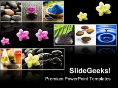 Collage Of Spa Beauty PowerPoint Templates And PowerPoint Backgrounds 0311