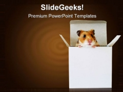 Cramped Inside The Box Business Template 1010