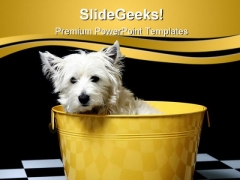 Cute Dog Animals PowerPoint Templates And PowerPoint Backgrounds 0411
