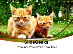 Dangerous Young Cats Animals PowerPoint Themes And PowerPoint Slides 0211
