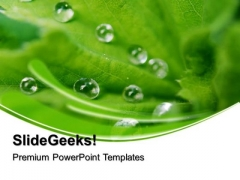 Dew Drops On Leaves Beauty PowerPoint Templates And PowerPoint Themes 0512