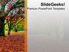 Dry Leaves Fall From Tree PowerPoint Templates Ppt Backgrounds For Slides 0513