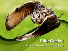 Eagle Owl In Flight Animals PowerPoint Templates And PowerPoint Backgrounds 0111