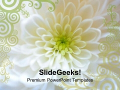 Express Your Feelings With Flower Theme PowerPoint Templates Ppt Backgrounds For Slides 0613