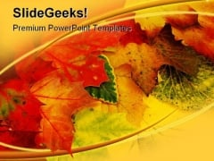 Fall Leaves Nature PowerPoint Backgrounds And Templates 0111