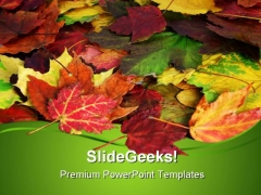Fall Leaves Nature PowerPoint Templates And PowerPoint Backgrounds 0511