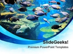 Fishes Inside Sea Animals PowerPoint Templates And PowerPoint Backgrounds 0111