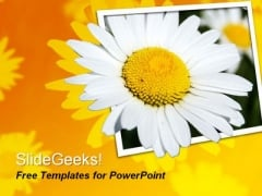 Beautiful Flower PowerPoint Template
