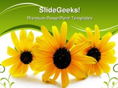 Flower Beauty PowerPoint Templates And PowerPoint Backgrounds 0211