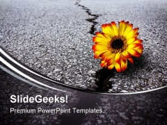 Flower In Asphalt Metaphor PowerPoint Themes And PowerPoint Slides 0611