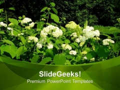 Flowers In Garden Nature PowerPoint Templates Ppt Backgrounds For Slides 0513