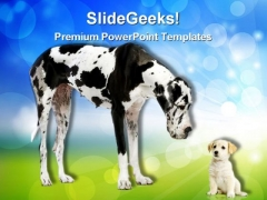 Great Dane Harlequin Animals PowerPoint Themes And PowerPoint Slides 0311