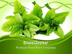 Green Mint Leaves Nature PowerPoint Templates And PowerPoint Backgrounds 0211