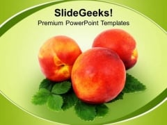 Healthy Diet Food PowerPoint Templates Ppt Backgrounds For Slides 0213