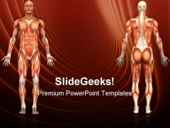 Human Anatomy Male Muscles Science PowerPoint Templates And PowerPoint Backgrounds 0911