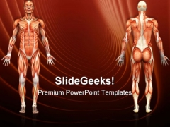 Human Anatomy Male Muscles Science PowerPoint Themes And PowerPoint Slides 0911